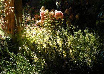 Floralies 2010_0032