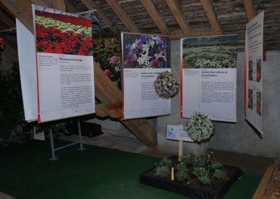 Floralies 2010_0038